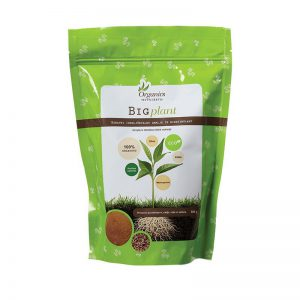 organics-nutrients-big-plant-500g